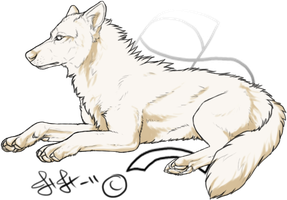 Not Free! Premade Wolf Pose:Lay by Spike654