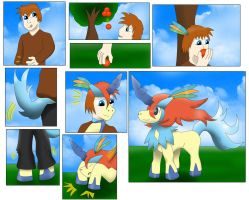 Strange fruit ( Comission Keldeo TF ) by Wolfeenix
