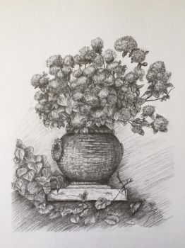 Hydrangeas - creating texture study by winter-of-hearts