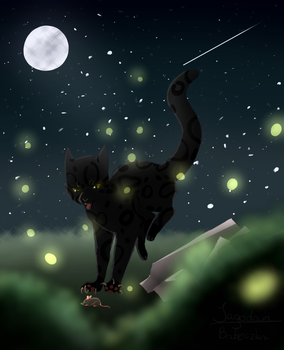 Starry Sky of Windclan by JagodowaBabaeczka