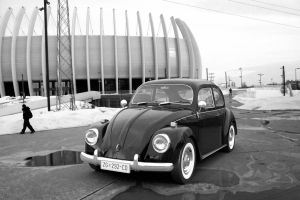 VW Beetle 1967 BW by AnalyzerCro