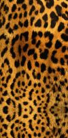 Big Cat Fur Custom Box Background by OriginalSuperSaiyan