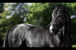 What a stud... literally by Decorum100
