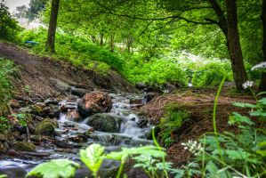 HDR Hiking - Austria by Surfinger