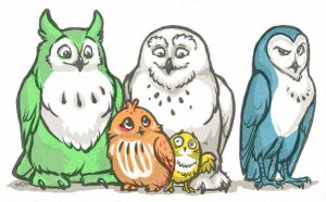 Owl in the Family by lyosha