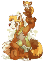 Red  Panda by why-so-cirrus