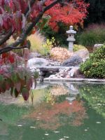 Schedel Gardens - Reflections by urban-photos
