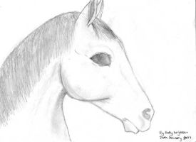 Horse by Hatters-Workshop