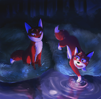 About Reflections by Erexis