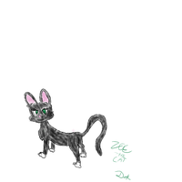 Zoe The Cat by doktor95