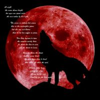 The moon and his wolf by Carlitos-Girl