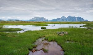 Lofoten Islands - Norway by Stridsberg