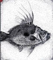 Fish - Pen and Ink Drawing by BenSane83