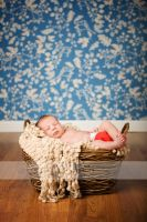 Baby Noah....3 by CreativeExpressions