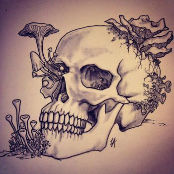 Fungal Skull by thehotmageaeris