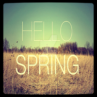 Hello Spring by Labrinth63