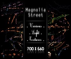 various light by magnolia-street