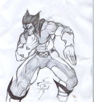 wolverine by DominicanFlavor
