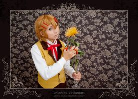 Finnian:::::: by Witchiko