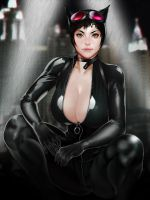 Catwoman by botslim