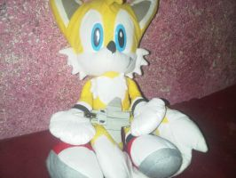 My Tails plush and My Leader 1 by VOLTAREVILGIRL
