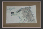 .: Tsume Card :. by BeachBumDunkin