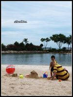 Building Sand Castles by dhartinis