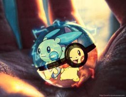 Plusle and Minun in a pokeball