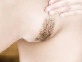 hairy by imagegarden