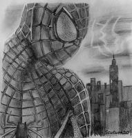 Spiderman by Scutum20