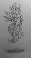 Rainbow Dash sketch by Senselesssquirrel