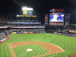 Citi Field 1 by javy905