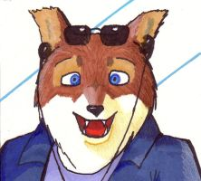 Brown Wolf with CD player by BrownWolfFM
