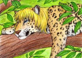ACEO Black Diaraikia by Alassa