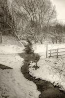 The Stream in the Snow... by TheBaldingOne