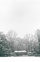 Spring-Snow by RicanFx