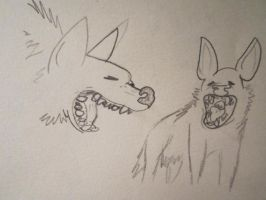 Hyena studies 3 by CaribouxSkull