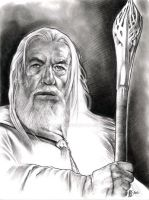 Gandalf the White by prmedia