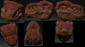 T-rex 3D Head by Carolzilla