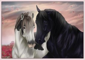 Love is in the Air.. by cerona