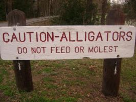 Don't Molest The Alligators. by RockOutWithMyCockOut