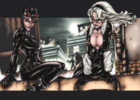 Catwoman and Black Cat by AdamWithers