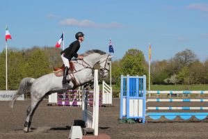 Senior Affiliated Show Jumping by tammyins