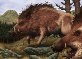Brindle Boar by DaveAllsop