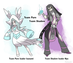 Pokemon Dusk and Dawn Team Pure and Team Shadow by Phatmon66