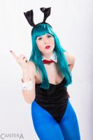 Bunny Bulma by CanteraImage