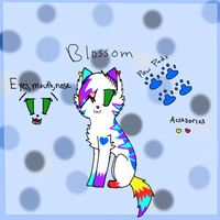 Blossom Ref Sheet by BlossomTehKat