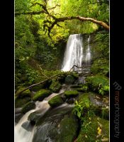 Matai Falls by mark-flammable