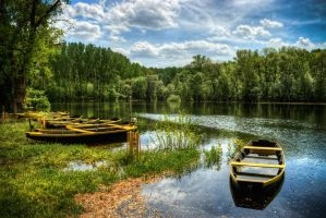 Wonderful Scenery by micecat