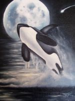 Chii's Orca Moon by Angels-Little-Chii